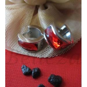 Обеци от медицинска стомана в сребърен цвят и червен кристал E - 21135